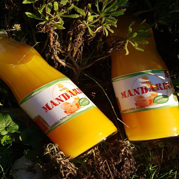 Okusi i mirisi juga - sok od mandarina
